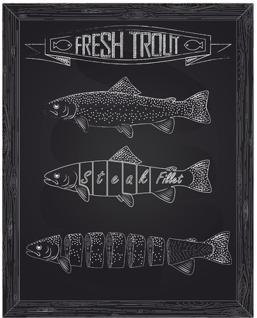 three fresh trout from the scheme drawing in the chalk Иллюстрация