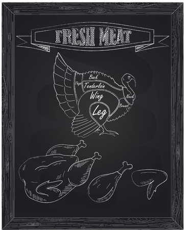 fresh meat: young beautiful goose on a scheme and fresh meat drawn with chalk
