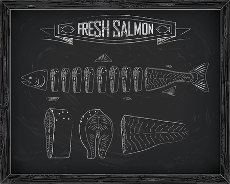 fillet: cutting scheme fresh salmon drawing in the chalk Illustration