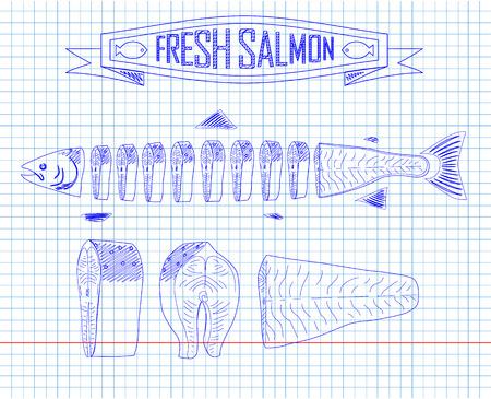 salmon fillet: cutting scheme fresh salmon drawing in the pen