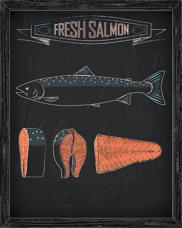 fillet steak: fresh whole one young salmon , fillets and steaks drawing in the chalk Illustration