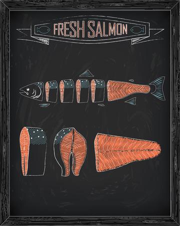 fresh salmon: cutting scheme fresh salmon drawing in the chalk Illustration