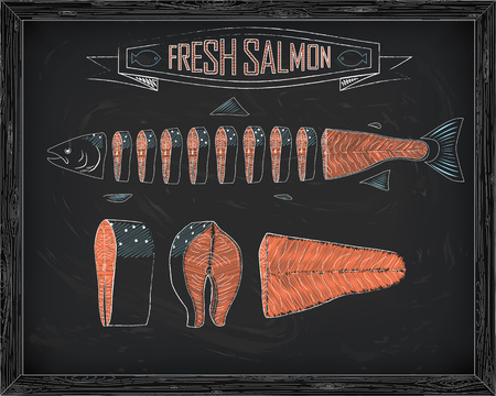 meat food: cutting scheme fresh salmon drawing in the chalk Illustration