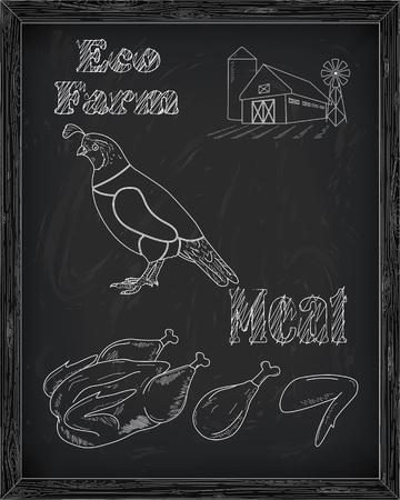 beautiful fresh quail and farm drawn in chalk