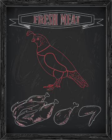 beautiful fresh quail and meat drawn in chalk