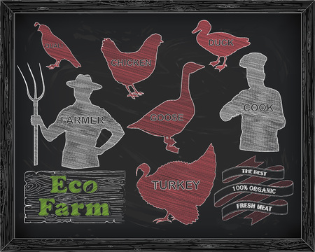 beautiful chicken turkey duck goose quail and farmer with the cook drawn in chalk