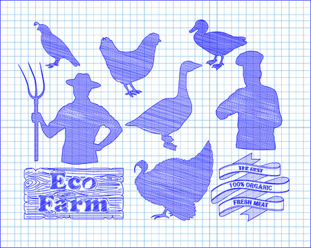 beautiful chicken turkey duck goose quail and farmer with the cook drawn in pen Imagens - 55279343