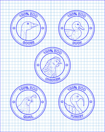 beautiful icons head chicken turkey duck goose quail drawn in pen Ilustração