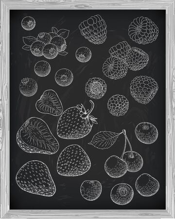 whortleberry: berries set blueberry raspberry strawberry cherry on a black background drawn with chalk Illustration