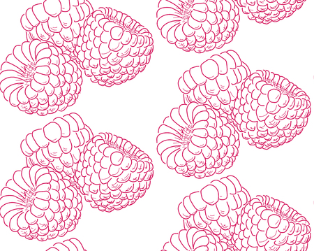 crimson: nice template with drawing crimson raspberries sketch on a white background Illustration