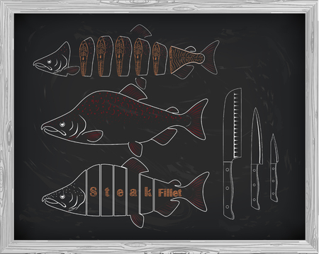 pink salmon: Beautiful fresh salmon and knives closeup side view drawn with chalk. Pink salmon cutting scheme black and white colors. Menu on blackboard
