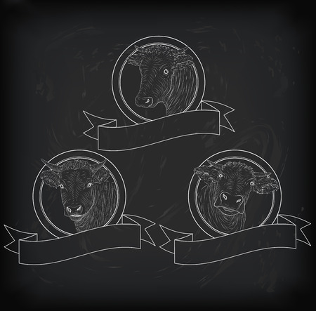 square tape: ow, calf, bull cute muzzle face set collection variation sticker icon label tag badge symbol text space tape. square nice chalkboard sign outline drawn chalk illustration