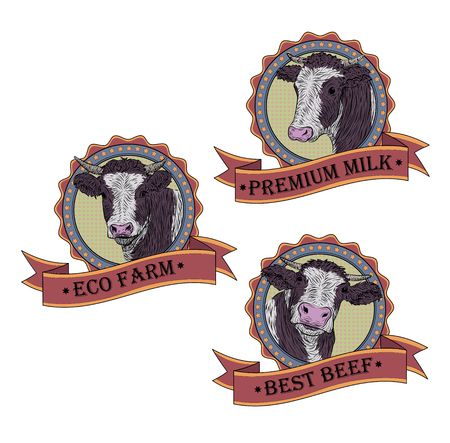 variation: Cow, calf, bull cute muzzle face set collection variation sticker icon label tag symbol text space tape. Illustration