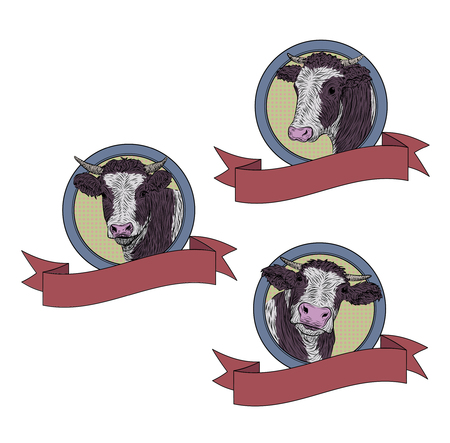 brute: Cow, calf, bull cute muzzle face set collection variation sticker icon label tag symbol text space tape. Illustration