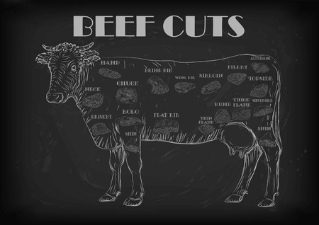 Beef cow bull whole carcass cuts cut parts infographics scheme sign signboard poster butchers guide: neck chunk, brisket fillet rump. Vector beautiful horizontal closeup white outline black background Illustration
