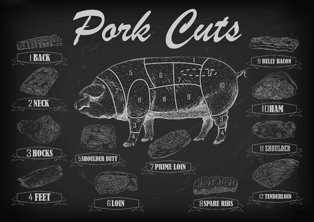 hock: Pork pig side carcass cuts cut parts info graphics scheme sign signboard poster butchers guide back neck feet shoulder butt loin ham.  beautiful horizontal closeup white outline black background