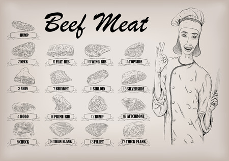 Beef cow carcass cut parts info graphics poster butchers guide neck chunk brisket fillet rump woman butcher cook worker smile portrait. Vector closeup horizontal beautiful black linear illustration