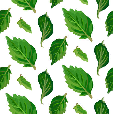 tree isolated: Leaf leaves. Vector green linear cute line beautiful herbal laurel leaf plant nature illustration isolated on white background. Illustration