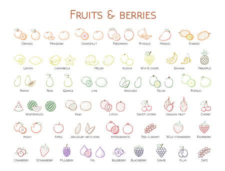 Outline colorful linear web icon set - Fruit & berries Thin bold Line food Icons For logo, label Orange banana strawberry plum, citrus, litchi, cherry, mango pear, kiwi, lemon, tropical big collection