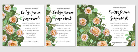 Vector set of design cute wedding invitations, greeting cards, letters, banners, certificates. Cream roses with green leaves and twigs of eucalyptus isolated on white background. Illustration