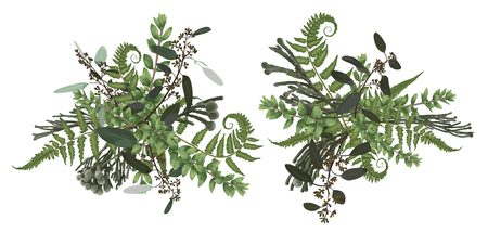 Vector floral bouquet design set, green forest leaf, brunia, fern, branches boxwood, buxus, eucalyptus. Watercolor style, herbs. Wedding for invite card Isolated design elements 일러스트