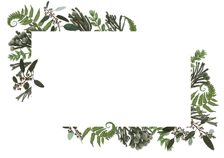 Vector card floral design with green watercolor, eucalyptus, forest fern, herbs, eucalyptus, branches boxwood, buxus, brunia, botanical green, decorative horizontal frame, square. Cute greeting, postcard template, wedding invite