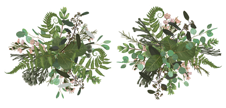 Vector floral bouquet design set, green forest leaf, brunia, fern, branches boxwood, buxus, eucalyptus and chamaelaucium. Watercolor style, herbs. Wedding for invite card Isolated elements