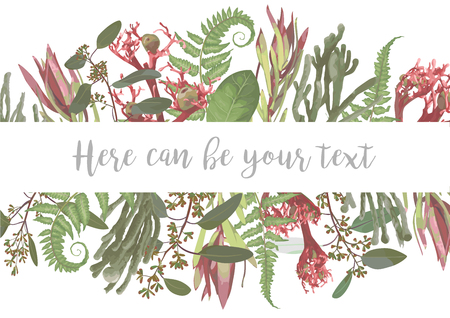 Vector illustration of a frame with flowers. Brunia, fern, eucalyptus, leucadendron, gaultheria, salal, jatropha.Pattern for wedding invitations, greeting cards, banners, certificates and labels