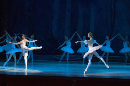 balletic: DNIPRO, UKRAINE - NOVEMBER  5, 2016: Don Quixote ballet performed by members of the Dnipropetrovsk Opera and Ballet Theatre.
