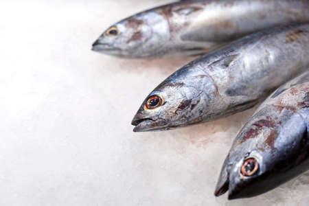 Big fresh whole raw tuna fish on the ice. Traditional premium seafood. 版權商用圖片
