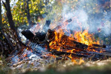 Large smoky bonfire in the garden.