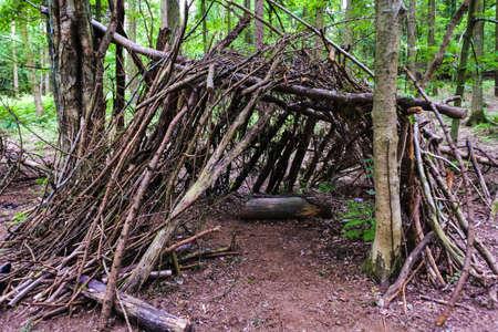 Hartshill ヘイズ カントリー パーク、ナニートン英国で森の中のキャンプ