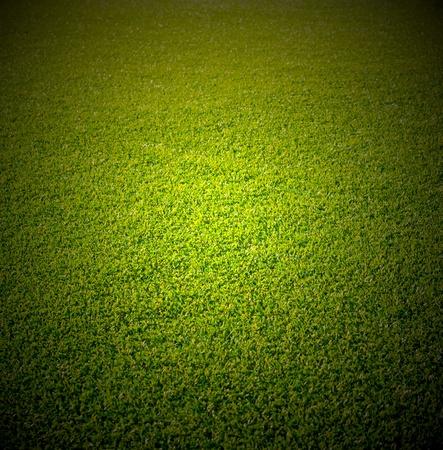 Artificial grass Stock Photo - 9558535