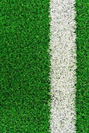 White stripe on the green grass field