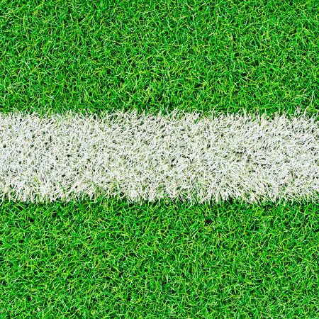 lines on soccer field Stock Photo - 14155202