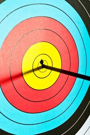 archery: Arrows in archery target
