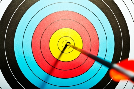 precision: Arrows in archery target
