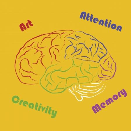 Drawing human brain