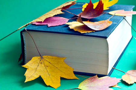 This is black book with autumn leaves Stock Photo