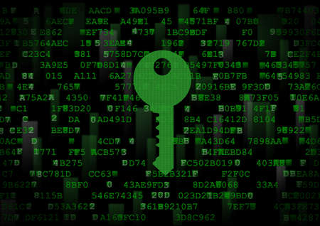 It is a symbol of a digital key. This is a computer security theme.