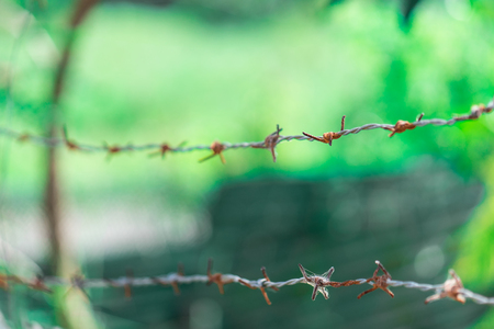 Blurred rusty barbed wire fence Stock Photo