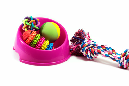 Pet supplies set about bowl, rope, rubber toys for dog or cat on white background Foto de archivo