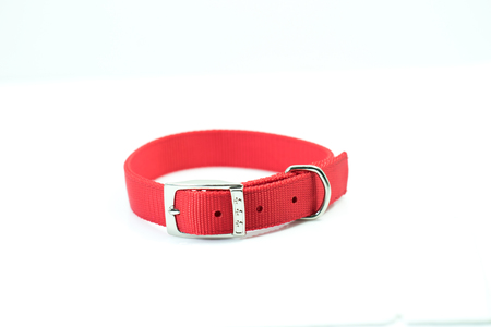 Pet supplies about collars of red isolated on white background.