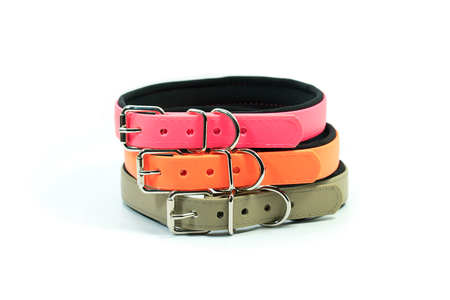 Pet supplies about rubber collars stack for pet on white background. Zdjęcie Seryjne