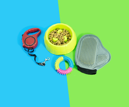 Pet supplies about bowl with dry food, rubber toys and leash on blue and green background.