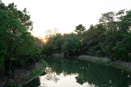 Pond in public park with Sun rise.