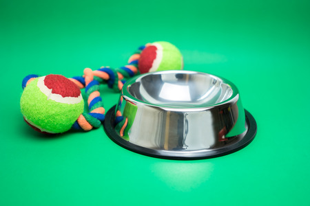 Pet bowl stainless with toy on green background Stock Photo - 122180318