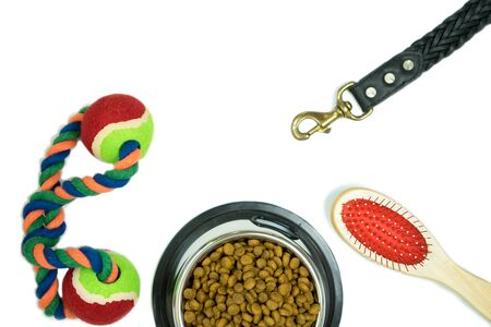 Dry food for pet and pet supplies on isolated white background Zdjęcie Seryjne