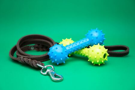 Pet leashes with rubber toy and pet supplies for dog or cat concept 写真素材