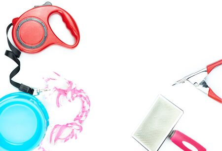 Pet accessories concept.  Plastic bowl, Leashes and toy on isolated white background. 版權商用圖片